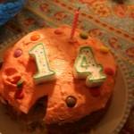 14 by Asitha Ameresekere