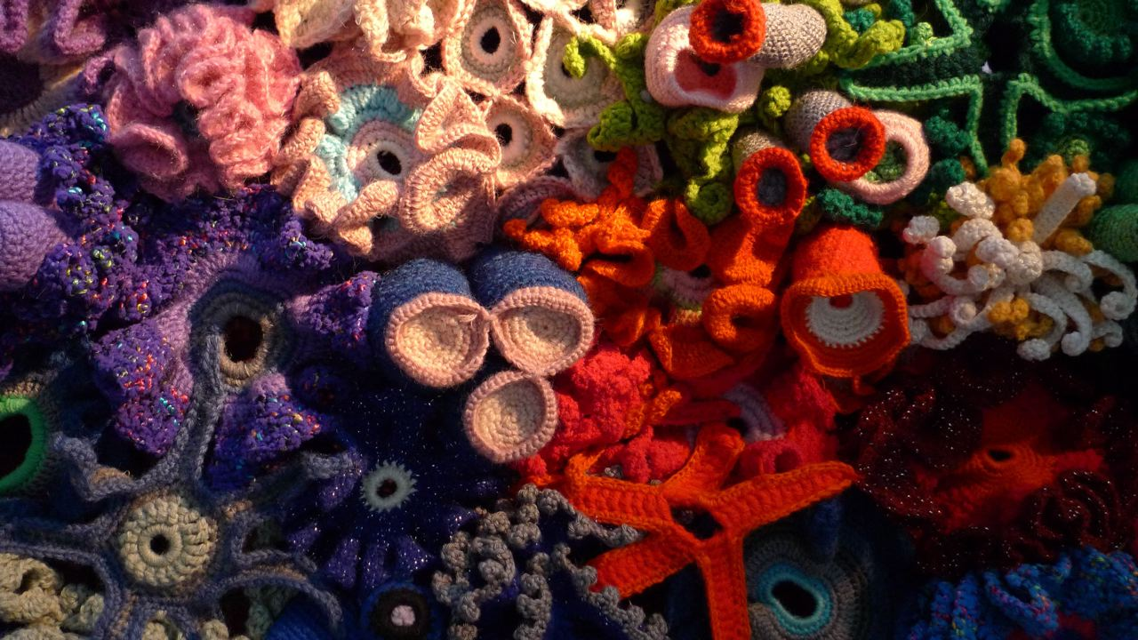 Crochet Coral Reef : hyperbolic crochet coral reef Tumblr