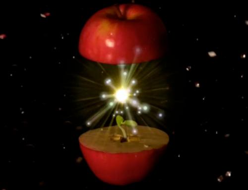 Happy Holidays from CalArts   Animation by Miwa Matreyek