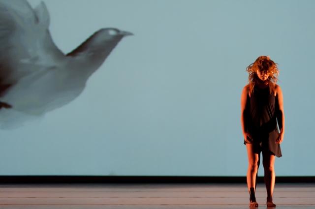 'Stardust' by David Roussève/REALITY.   Photo: Valerie Oliveiro