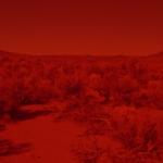 Still from Laida Lertxundi's '025 Sunset Red.'