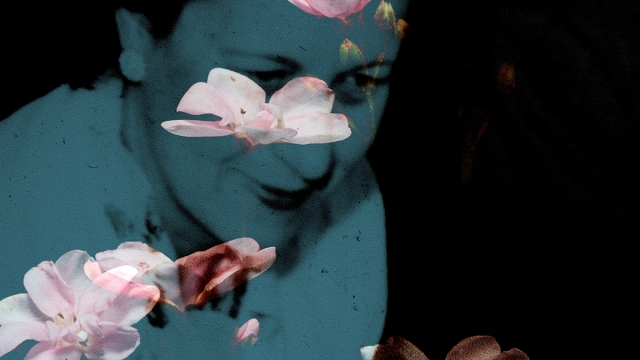 Still from Janie Geiser's 'Flowers of the Sky.'